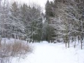 plener_zimowy1.jpg