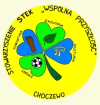 logo_STEK