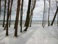 plener_zimowy.jpg