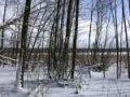 plener_zimowy3.jpg