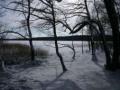 plener_zimowy5.jpg